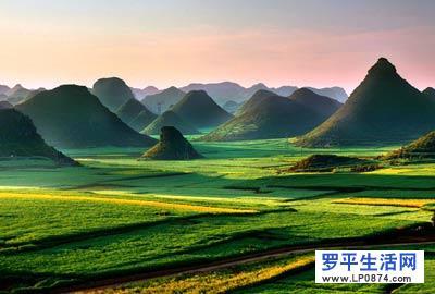 2002年,云南省曲靖市罗平县经上海大世界吉尼斯总部批 准,创下了