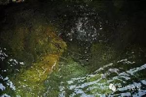 记者调查:罗平葡萄山泉饮用水质量是否合格?
