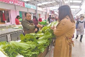 我市蔬菜价格普涨 主管部门权威解释
